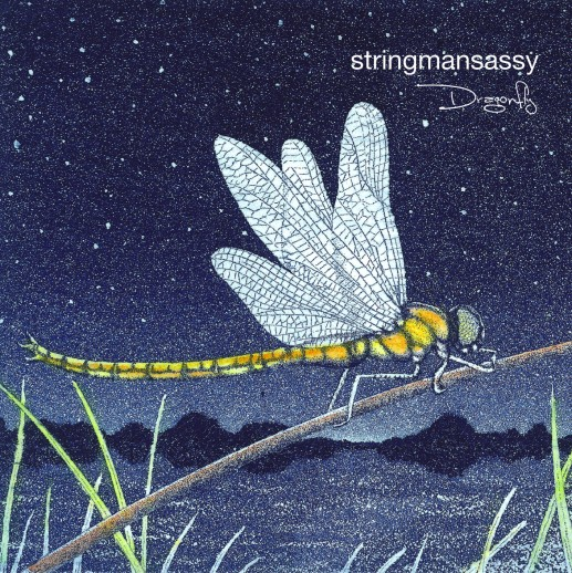 Dragonfly_cover